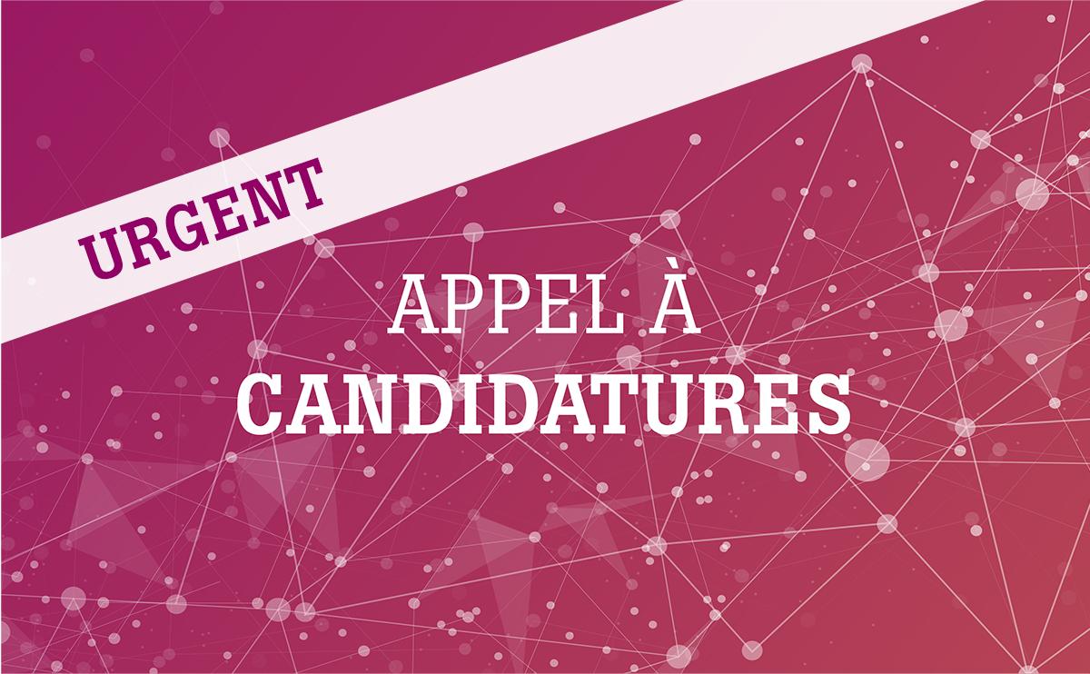 Mandat : appel à candidatures urgent